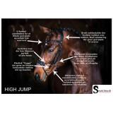 A  Oversigt over High Jump's mange finesser