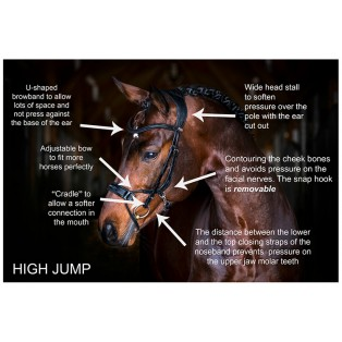 High Jump Revolution